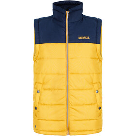 Regatta Hadley B/W Vest Men yellow/blue